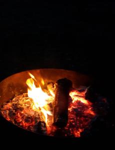fire-web