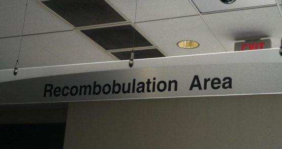 REcombobulation cropped sm
